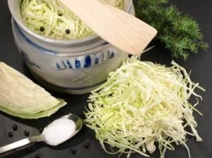 alimente-fermentate
